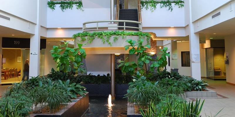 interior plants company